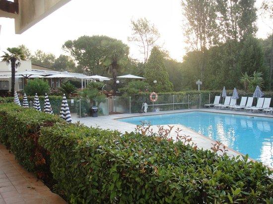 Novotel Antibes Sophia Antipolis : Piscina confortável