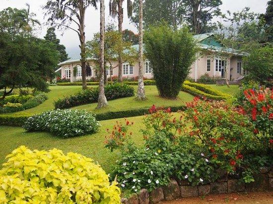 Ceylon Tea Trails: Castlereagh Bungalow
