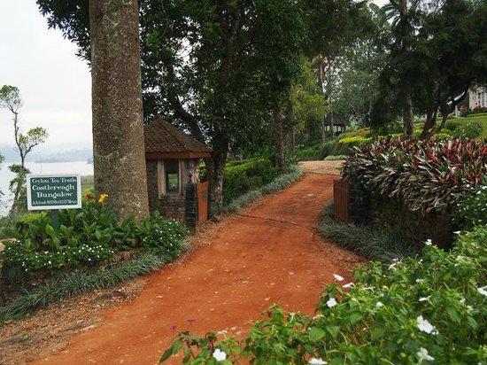 Ceylon Tea Trails - Relais & Chateaux: Entry to Castlereagh Bungalow