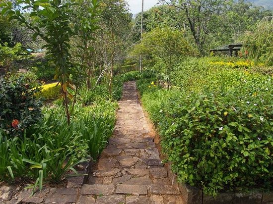 Ceylon Tea Trails: Gardens at Tientsin Bungalow