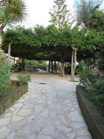 Grand Hotel Vesuvio: Grounds