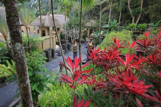 Royal Kirana Spa & Wellness: lush bensley garden