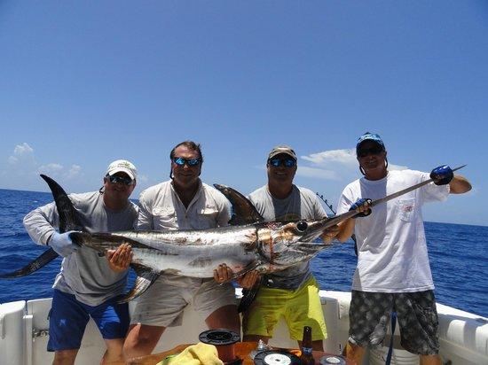 Captain Cadillac Fishing Charters: Swordfish