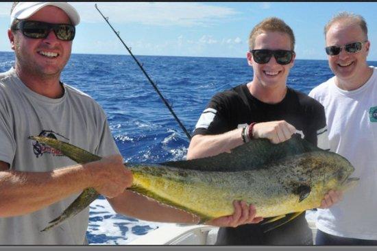 Captain Cadillac Fishing Charters: Mahi