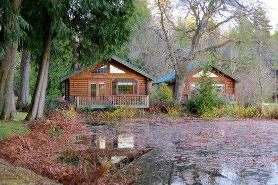 Rowena's Inn on the River: pond