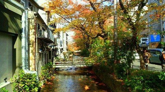Takasegawa: 四条木屋町から北を望む