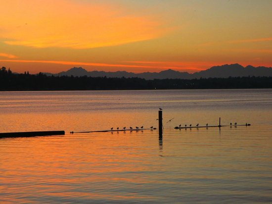 Gene Coulon Memorial Beach Park: The Olympic Mountains in the distance