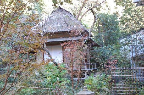 Jindai-ji Temple : 茶室