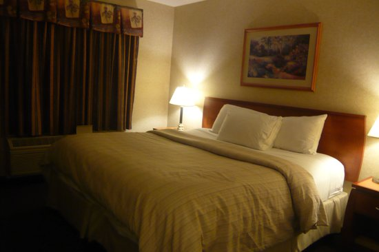 Days Inn - Vancouver Airport : Corner room