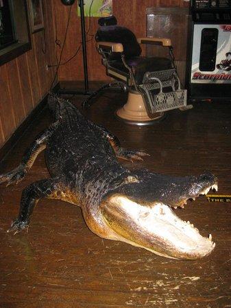 The Oyster House Restaurant: L'ubiquitario alligatore delle Everglades