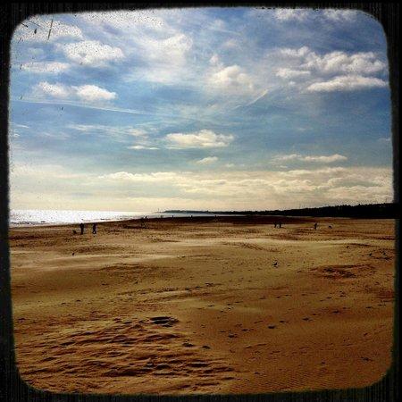 Gorleston Beach: Golden sand