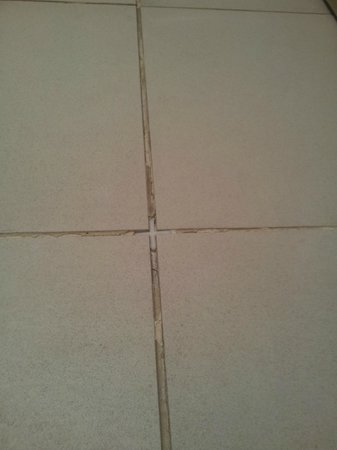 Bridge of Orchy Hotel: tiles in the bathroom