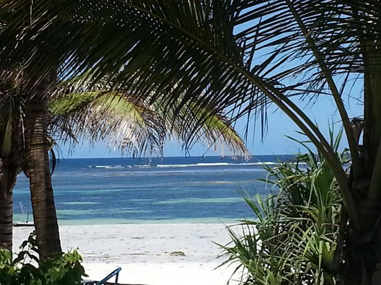 Diani Beach: A nice view at lunch