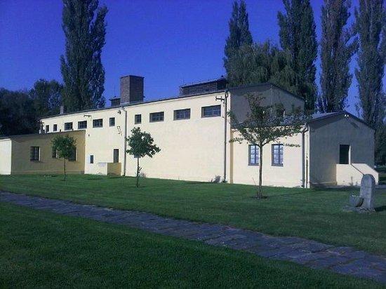The Jewish Cemetery: Jewish Cemetery