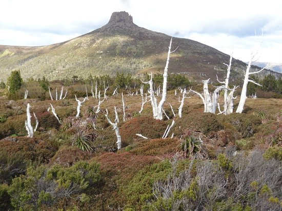 Cradle Mountain Huts: From the slopes of Mt Doris