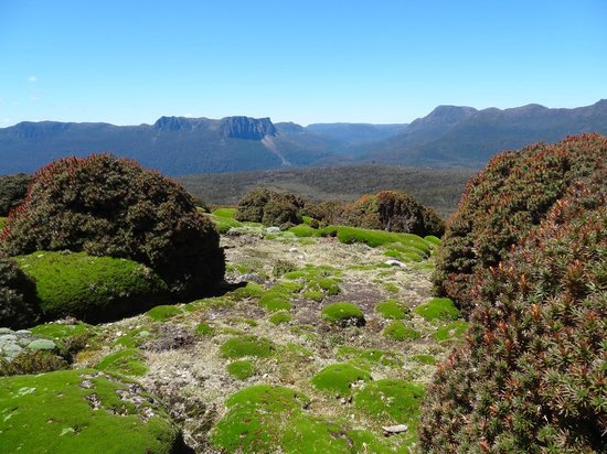 Cradle Mountain Huts: Breathtaking scenery every day