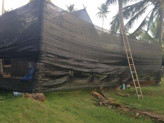 Koh Kood Beach Resort: 3 feet from our room