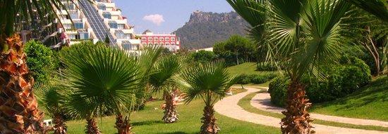 Limak Limra Hotel : цветы, пальмы