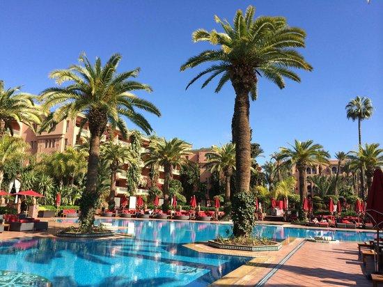 Piscine jacuzzi bild von sofitel marrakech lounge and - Piscine sofitel marrakech ...