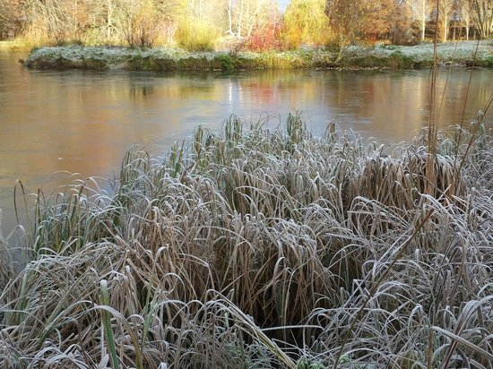 Boath House Hotel: frosty lake