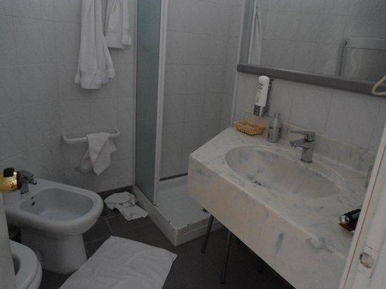 Hotel Negresco : microbagno