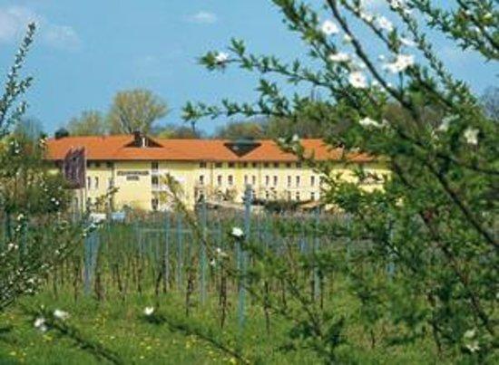 Steigenberger Hotel Deidesheim: Außenansicht