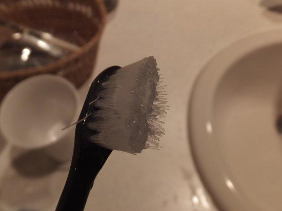 La Vista Kushirogawa: 一回でダメになる歯ブラシ