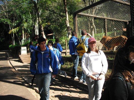Parque Zoologico Municipal de Bauru: Zoo Bauru