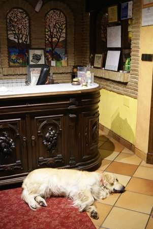 El Balcon de las Nieves: recepcion y recepcionista ^^