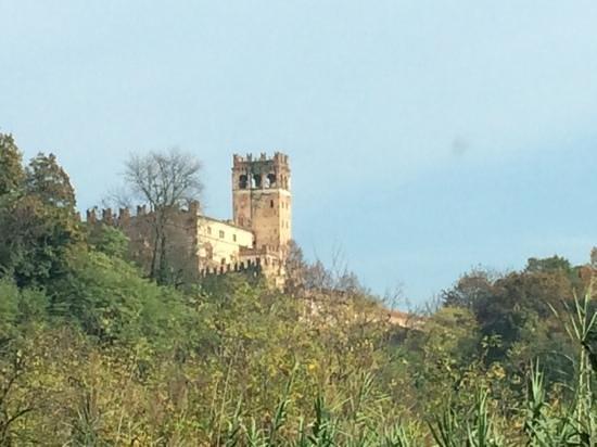 Castello di Camino: castello visto da lontano