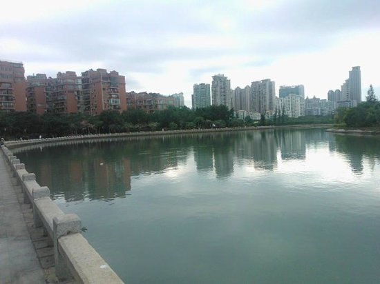 Marco Polo Xiamen: lake near hotel 1
