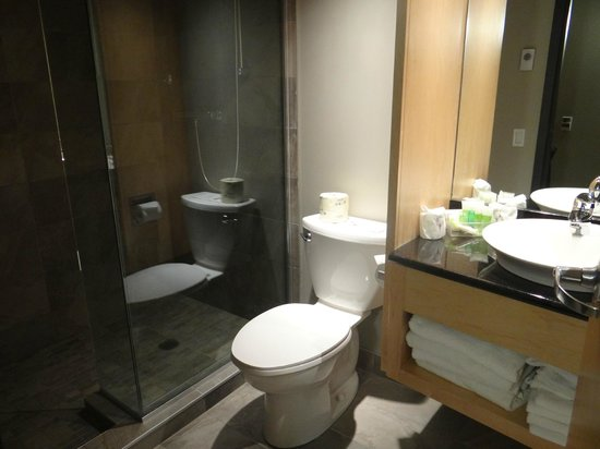 Hotel Le Dauphin Montreal Centre-Ville: salle de bain