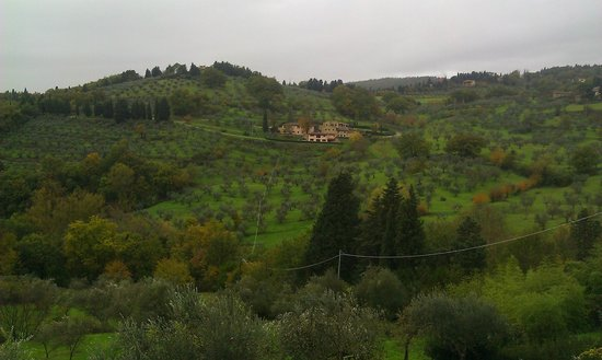 Villa Di Campolungo Agriturismo : waking up with a view