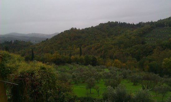 Villa Di Campolungo Agriturismo: waking up with a view