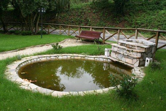 A Cobacha: jardín