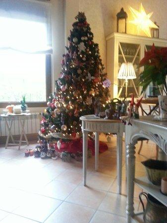 Hotel Rural Arpa de Hierba : El árbol de Navidad. .. alucinante