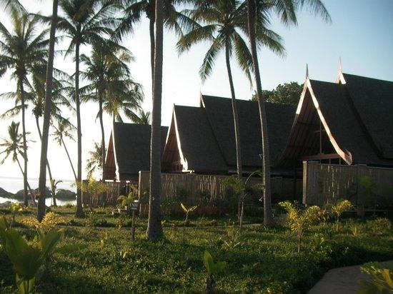 Kupu Kupu Phangan Beach Villas and Spa by l'Occitane: Villas in line