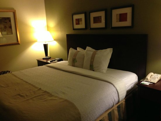 Holiday Inn Beaumont Plaza: Room with king bed