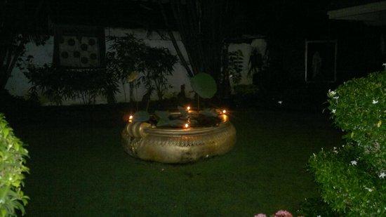 Ann's Residency : The amazing Garden