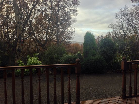 Spring Wood Lodges: View from cabin