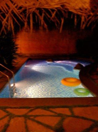 Orange County Resorts Kabini: inside pool at night in pool hut