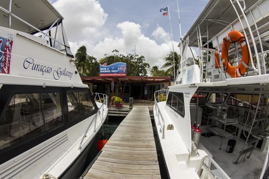 Ocean Encounters Diving: The Curacao Phoenix and The Galaxy at our pier