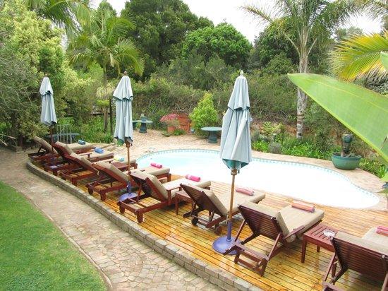 Knysna Tonquani Lodge & Spa : Pool - From Room 4