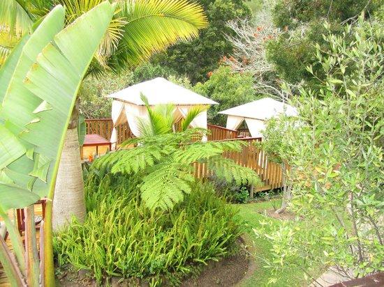 Knysna Tonquani Lodge & Spa : Pool ARea