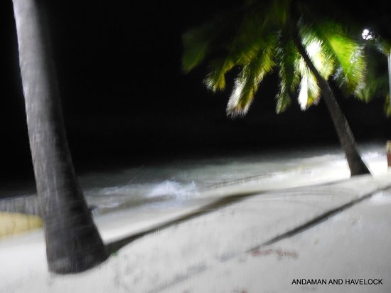 Dolphin Resort: the sea at evening