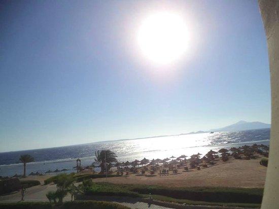 Sea Club Resort - Sharm el Sheikh: Strand des Hotels