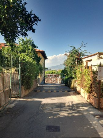 B&B Il Roseto : View coming down the driveway