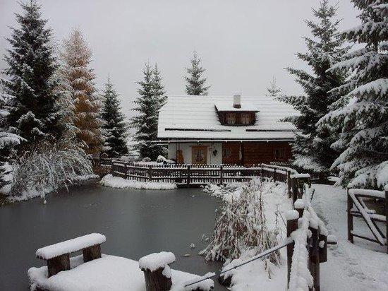 Almdorf Seinerzeit - World Peace Eco Resort: almdorffeeling