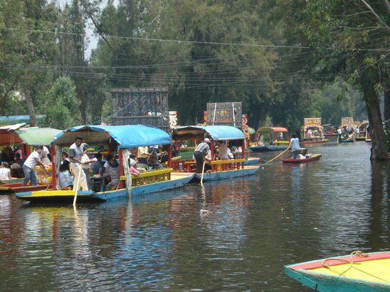 Popular With Locals Picture Of Floating Gardens Of Xochimilco Mexico City Tripadvisor