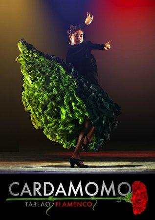 Cardamomo Tablao Flamenco